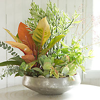 Container Recipe: Bring the Outdoors In