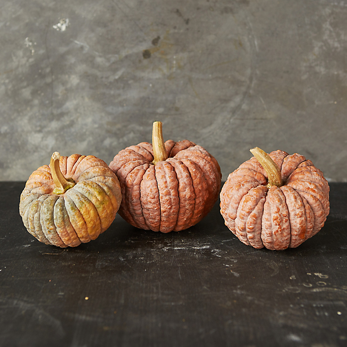 6 Things: Autumn's Pumpkin Harvest