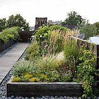 Gardenista in Residence: A Conversation with Michelle Slatalla