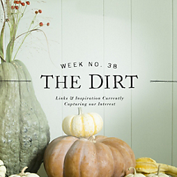 The Dirt | 2014 | week no. 38