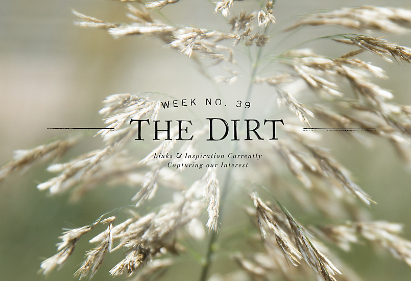 The Dirt | 2014 | week no. 39