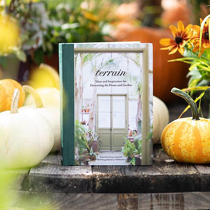A First Peek Inside: Terrain the Book