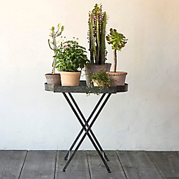 4 Plant Stand Recipes