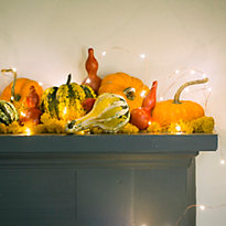Decorating with Pumpkins & Gourds