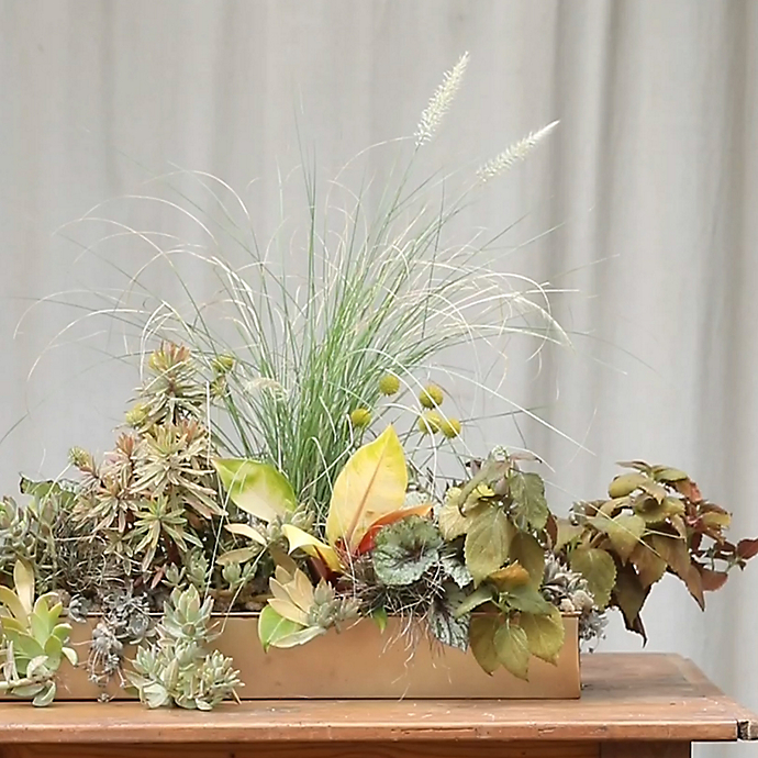 Terrain the Book: Centerpiece Trough Arrangements