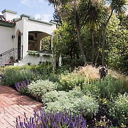 Gardenista in Residence: Michelle Slatalla's California Garden