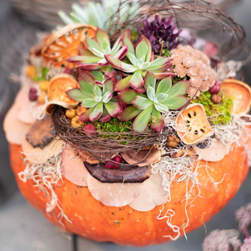 Fall Container Plantings with Design By Terrain