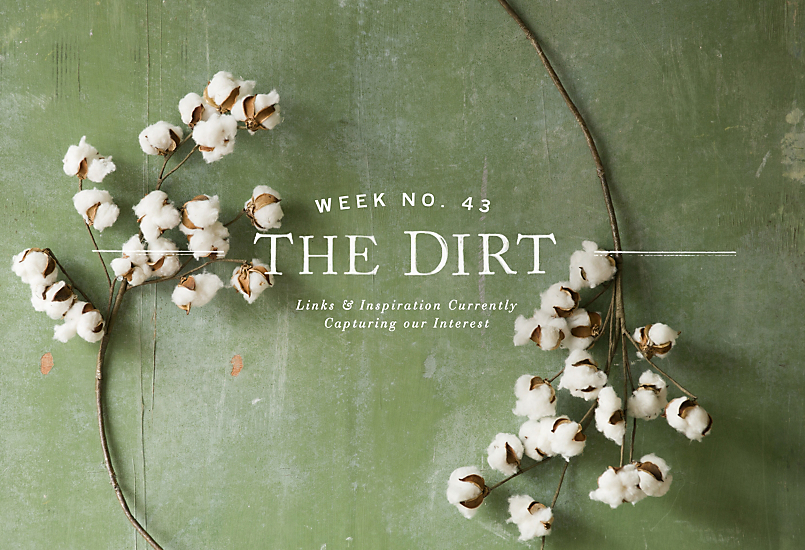 The Dirt | 2014 | week no. 43