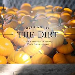 The Dirt | 2014 | week no. 44