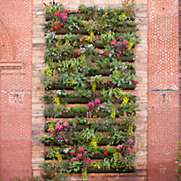 Behind the Scenes: terrain's Living Wall