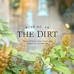 The Dirt | 2014 | week no. 45