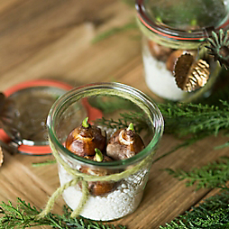 Bulbs in Weck for the Holiday Hostess