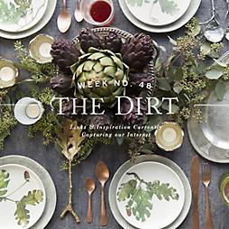 The Dirt | 2014 | week no. 48