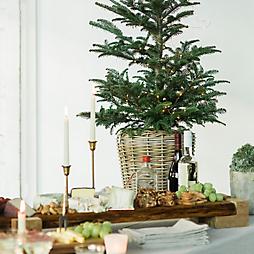 7 Tabletop Tree Looks