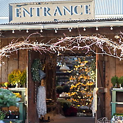 Our Holiday Store Tour