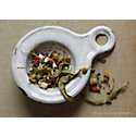 Tea Tasting: A Guide to Bellocq Teas