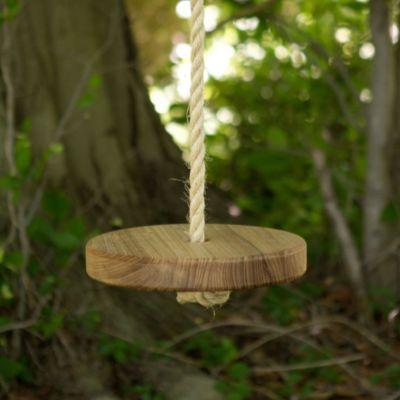 Original Tree Swing