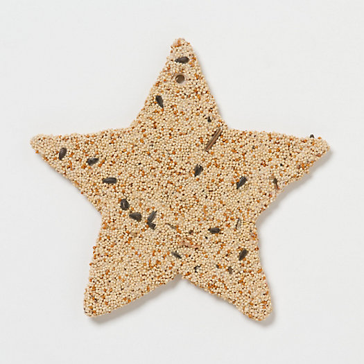 Edible Star Ornament