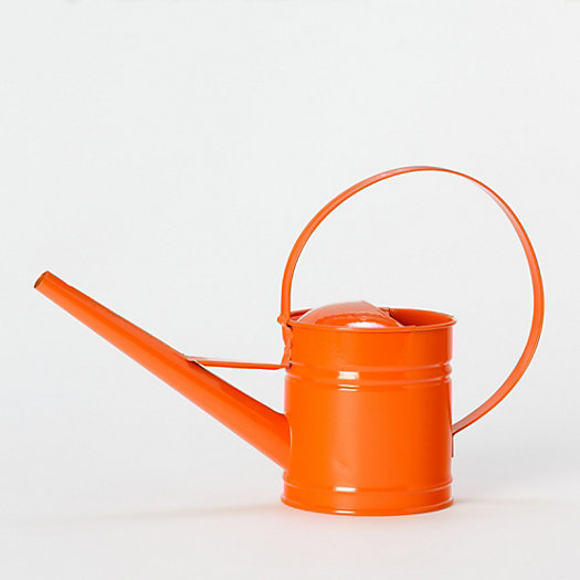 Petite Watering Can