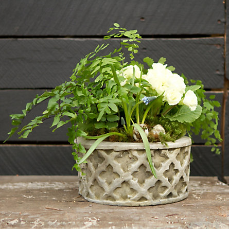 Gothic Lattice Planter