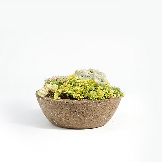 Low Profile Hypertufa Planter, Small