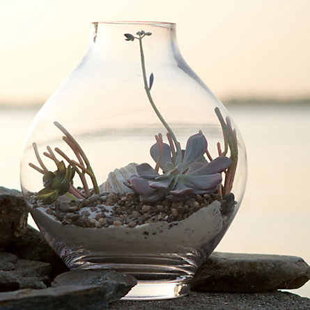 Footed Drop Terrarium