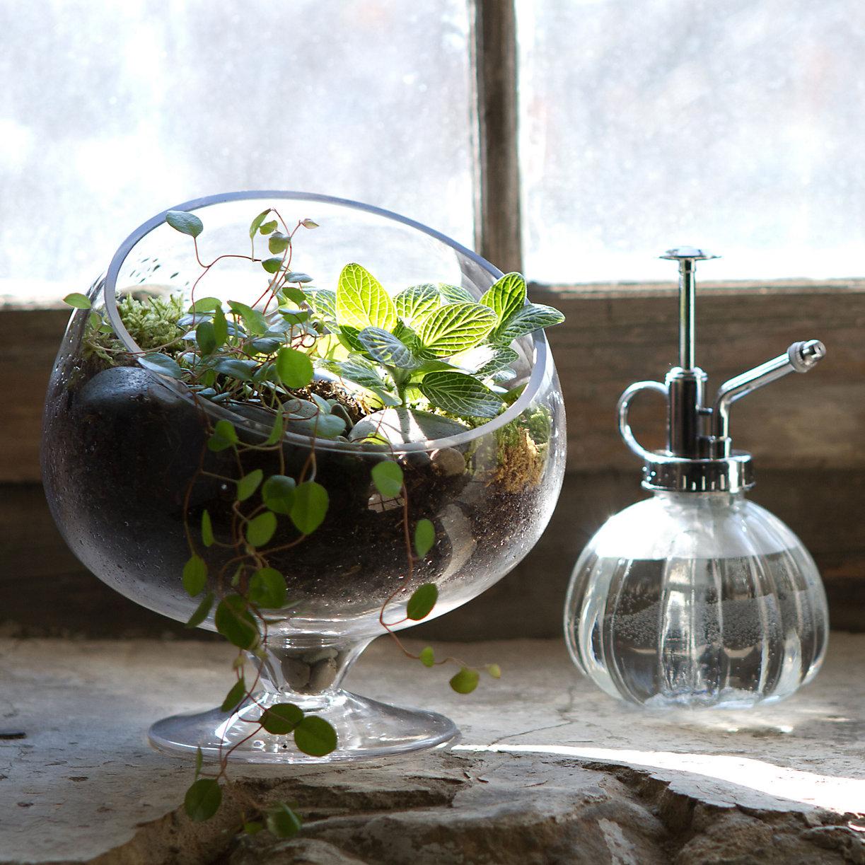 terrarium. Black Bedroom Furniture Sets. Home Design Ideas