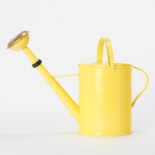 Sunny Side Watering Can