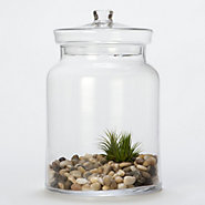 Candy Shop Terrarium