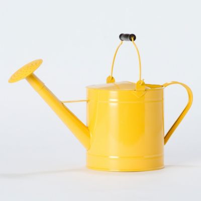 Lemon Utility Watering Can