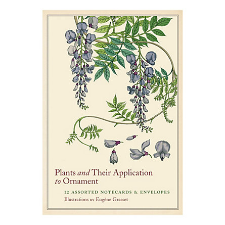 Plants & Ornaments Cards