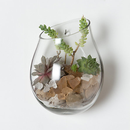 Floating Wall Terrarium