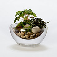 Floating Sand Bowl