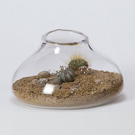 Simon Pearce Riverstone Terrarium