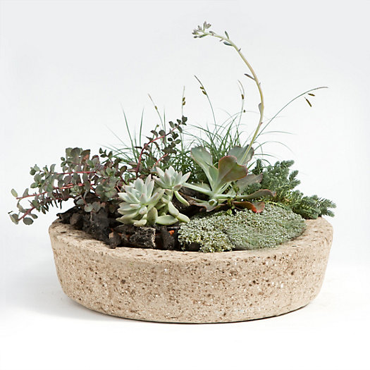 Low Profile Hypertufa Planter, Large