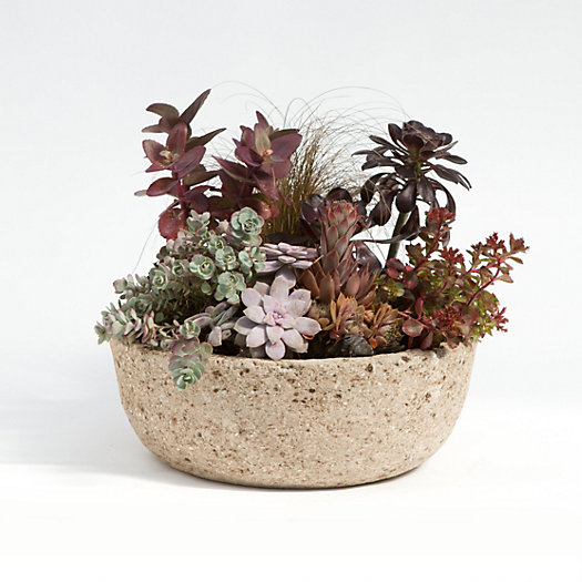 Low Profile Hypertufa Planter, Medium