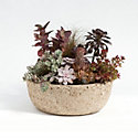 Low Profile Hypertufa Planter, No. 2