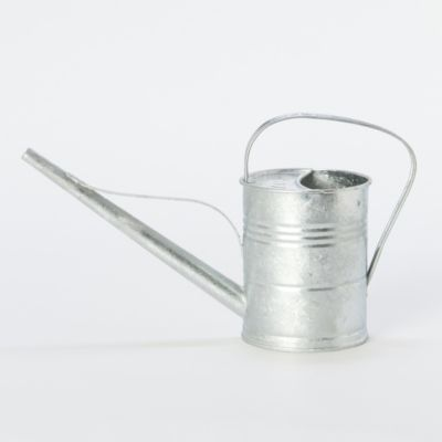 Hot-Dipped Steel Watering Can