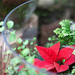 Birch Heart Wreaths