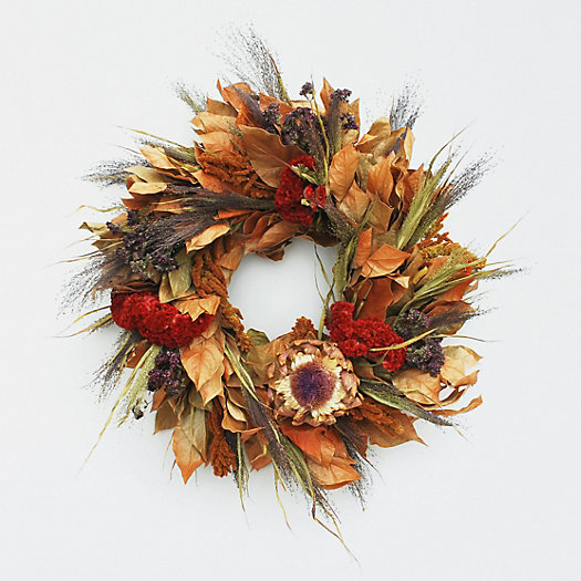 Sun Bleached Cardoon Wreath