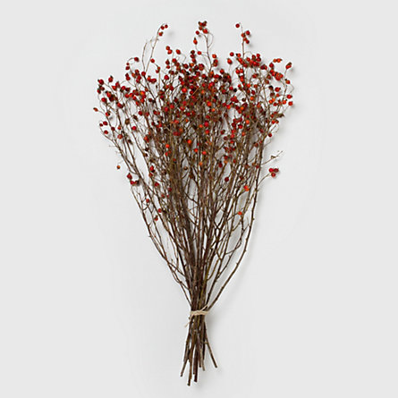 Dried Rosehip Bunch