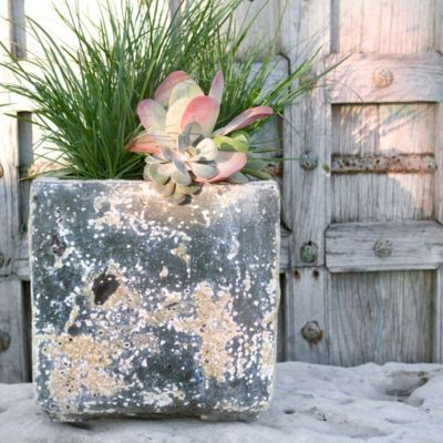 Barnacle Cube Pot, Large