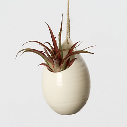 Ceramic Teardrop Planter