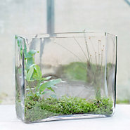 Angles Terrarium, Large Square