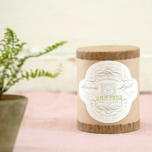 Linnea's Lights Candle, Wild Fern