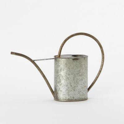 Galvanized Tin Watering Can