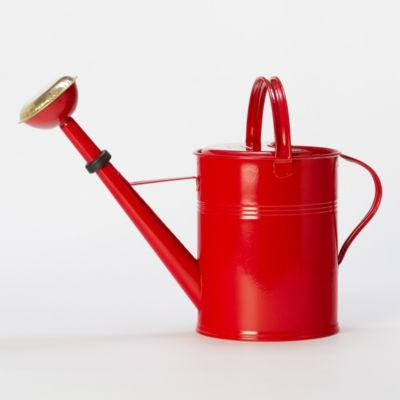 Cherry Blossom Watering Can