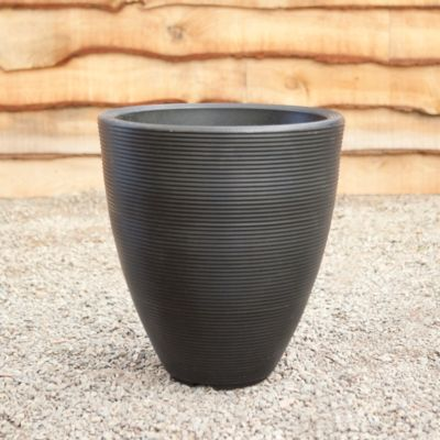 Ridged Egg Pot