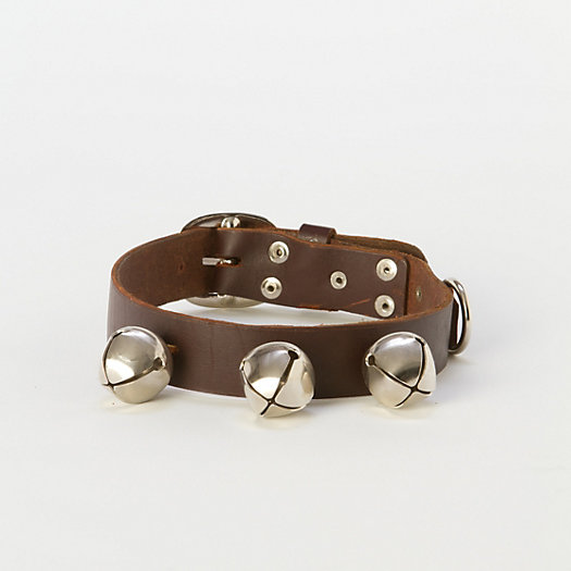 Sleigh Bell Dog Collar