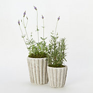Sweater Weather Pot, Tall